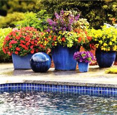 The rich blue is complemented perfectly by the flower pots. A very relaxing and colorful summer look! Get this look with our Lagoon Quad Atlantic tile. Pool Plants, Outdoor Plants, Potted Plants, Swimming Pool Tiles, Swimming Pool Designs, Container Plants, Container Gardening, Container Flowers, Blue Garden