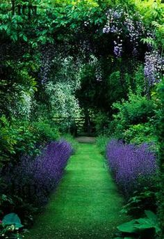 fabulous garden w/purple and green!. Obviously not in Escondido, CA - way too green and lush!