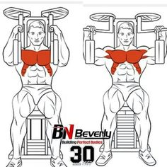 Chest Exercises Ejercicos para Pecho