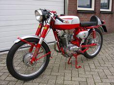 Moto Morini 125 Corsaro Veloce, c 1962 Pit Bike, 50cc, Royal Enfield, Ducati, Cars And Motorcycles, Motorbikes, Vintage, Motorcycles, Vintage Comics