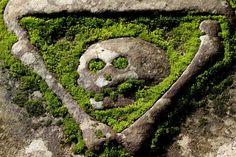 Gravestone at Elgin Cathederal, Elgin, Moray, Scotland