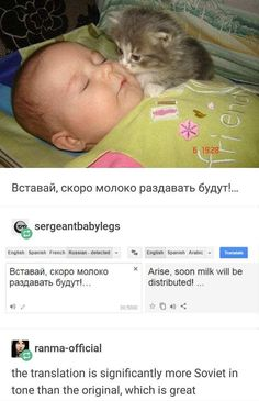 At first u was like awww, then I read the translation and i was like what the fuck, after that I started laughing so hard I fell down the stairs. Funny Cute, The Funny, Hilarious, Cat Memes, Funny Memes, Jokes, Funny Animals, Cute Animals, Cats Diy