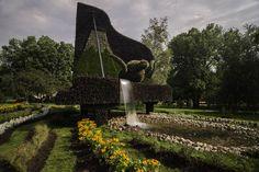 Gigantes de las esculturas vegetales | Coffee Break