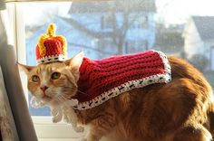 Ravelry: Royal Pet Attire pattern by To Craft A Home
