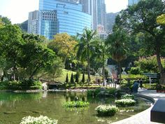 Original Hong Kong Central Park. Field Trips, Central Park, Hong Kong, New Homes, Landscape, The Originals, Places, Life, Lugares