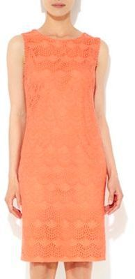 Wallis Coral lace shift dress on shopstyle.co.uk
