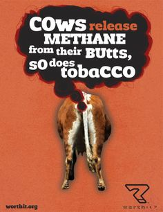 Youth tobacco prevention - print ad by EnviroMedia Social Marketing, via Flickr