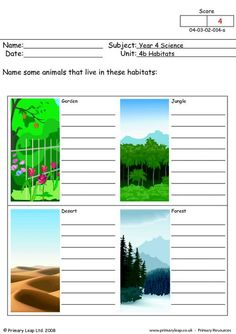 PrimaryLeap.co.uk - What animals live here? Worksheet