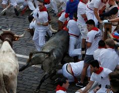 Running of the bulls: The most shocking photographs Pamplona hosts its infamous running of the bulls – part of the annual San Fermin festival – once again  -  July 7, 2017:      A Cebada Gago bull charges into runners during the first running of the bulls at the San Fermin festival in Pamplona