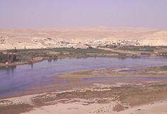 1990年代の中頃、シリア北部のユーフラテス川沿いに世界各国の考古調査隊が滞在。ダムで水没する遺跡の緊急発掘が目的。僕も地形調査を担当。写真の中央やや上方の小丘が対象の遺跡。良い思い出が多いが、今は深刻な紛争の地。 #平和をシリアに