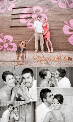 Heather Fowler Photography: family portrait session with dog