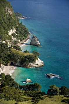Cathedral Cove, Coro