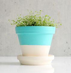 Moderniser un pot de fleur
