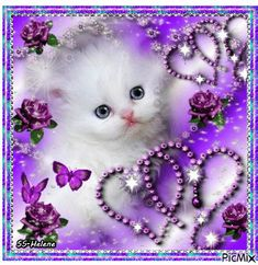 See the PicMix A little kitten. belonging to StellaStai on PicMix. Cute Baby Cats, Little Kittens, Cute Little Animals, Cute Cats And Kittens, Kittens Cutest, Cat Pattern Wallpaper, Blue Roses Wallpaper, Cute Good Morning Images, Good Night Flowers