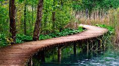 #Puente de #madera