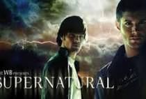 How well do you know the dark and devilish adventures of the Winchester boys? Supernatural Season 11, Supernatural Actors, The Wb, Tv Series Online, Winchester Boys, Plot Twist, Full Episodes, Live Action, Quizzes