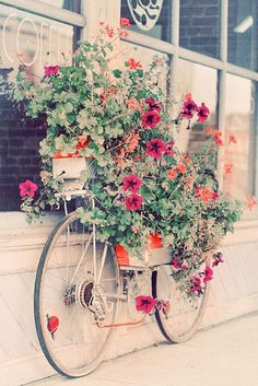 diy bicycle planter...find yourself an old bike, securely strap several planters...