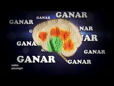 Redes Psicologia (el poder de las redes sociales) Eduardo Punset - YouTube