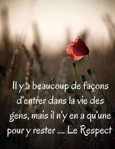 Discover recipes, home ideas, style inspiration and other ideas to try. Positive Attitude, Positive Quotes, Words Quotes, Life Quotes, Respect, Quote Citation, Positive Inspiration, French Quotes, Best Inspirational Quotes