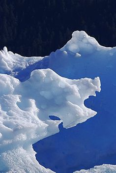 A very unusual iceberg calved from the Sawyer Glacier in Tracy Arm in southeast…