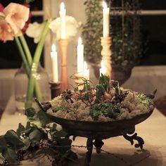 Så lycklig över detta fat jag fick när jag fyllde år. Användbart året om! • • • • • #växthus #orangeri #juldekoration #minträdgård #hyacint #trädgård #trädgårdsinspiration #trädgårdsinspo #garden #gardenlife #gardenlove #mygarden #giardino #hage #have #jardin #currentgarden
