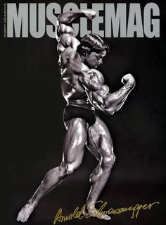Interesting Bodybuilding Pin re-pinned by Prime Cuts Bodybuilding DVDs: The World's Largest Selection of Bodybuilding on DVD. http://www.primecutsbodybuildingdvds.com/How-To-Train-Your-Body-DVDs