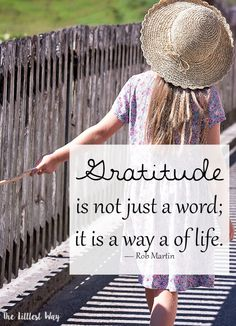 Daybook Online Journal Gratitude Quote