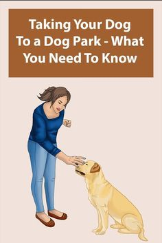 Taking your dog to a dog park is good for you and your dog. Your dog can exercise in a safe environment and you get the chance to make some new friends. Animal Magazines, What Dogs, Animal Room, Dog Facts, Pet Home, Dog Park, New Friends, Dog Training, Cute Dogs