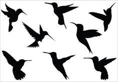 Hummingbird silhouette clip art Pack