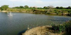 Acabo de compartir la foto de Sheyla Rivera Sanandres que representa a: Laguna natural