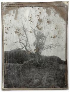 © Jeff Cowen   Special Project 30, 2010   Silver Gelatin Print