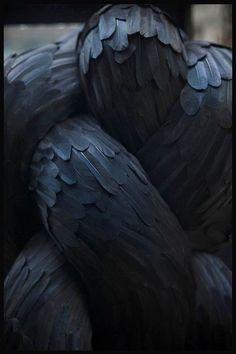 Les fascinantes sculptures en plumes de Kate MccGwire