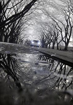 Invisible Reflection 4