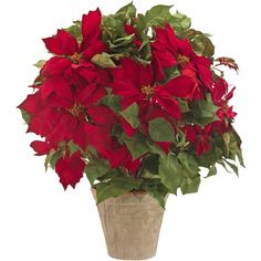 I pinned this Faux Poinsettia Arrangement II from the Natural Decorations event at Joss and Main!