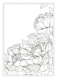 Ideas For Flowers Drawing Doodles Inspiration Coloring Pages drawing flowers is part of Flower drawing - Flower Line Drawings, Flower Sketches, Pencil Drawings, Art Sketches, Art Drawings, Drawing Flowers, Flower Coloring Pages, Colouring Pages, Watercolor Flowers