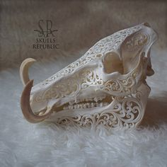 Real Pig Skull Carving, Carved Wild Boar Skull Taxidermy, Animal Skull and Tusk Home Decor, Pig Head Sclupture Bar Deco