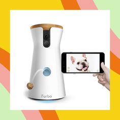 No chores just cuddles. Check out these innovative smart products great for pet owners. No chores just cuddles. Check out these innovative smart products great for pet owners. Fun Puzzle Games, Cat Water Fountain, Pet Camera, Training Your Puppy, Pet Grooming, Dog Leash, Cat Toys, Dog Owners, Dog Love