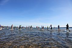 The TC Waterman, a huge stand-up paddleboard competition held every August on West Grand Traverse Bay.