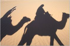camelshadow  (Mad about Morocco)   Interesting...if not so very fuzzy