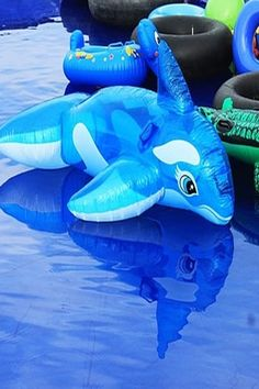 SEGA BASS FISHING – Nintendo Wii Wii Games, Original Music, Nintendo Ds, Bass Fishing, Console, History, Historia, Fishing