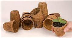 set of 6 coir pots coconut fiber pots by thecreativedesigner
