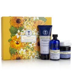Rejuvenate Frankincense Organic Beauty Collection