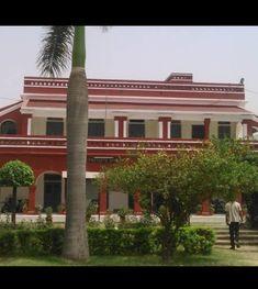 Aligarh Muslim University, Pergola, Outdoor Structures, Plants, Outdoor Pergola, Plant, Planets