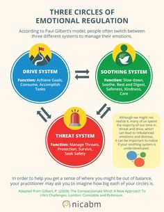 Applying the 3 Circles Model of Emotion to Help Clients Heal Shame [Infographic] - NICABM Trauma Therapy, Therapy Tools, Therapy Ideas, Therapy Worksheets, Therapy Activities, Therapy Games, Work Activities, Complex Ptsd, Emotional Regulation