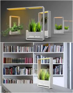 Bonny Plant Lamp – A Solar Powered Plant Lamp by Chun Jiang Yao - great product design Solar Led Lights Outdoor, Solar String Lights, Solar Powered Lights, String Lights Outdoor, Best Led Grow Lights, Green Lamp, Indoor Plants, Decorating Your Home, Outdoor Spaces