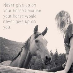 horse image by horse quotes. Discover all images by horse quotes. Cute Horses, Pretty Horses, Beautiful Horses, Equine Quotes, Equestrian Quotes, Equestrian Problems, Inspirational Horse Quotes, Motivational Sayings, Inspiring Quotes