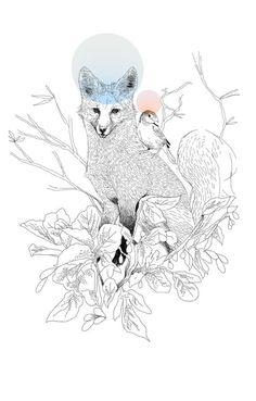 Heitor Satyro Illustrations |