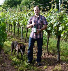 Winzer Michael Bremm baut in seinen Weinbergen an der Mosel u.a. #Riesling, #Dornfelder oder #Optima an. Diese oder andere Sorten vom Weingut Bremm jetzt online bestellen auf http://www.vicampo.de/weingut-bremm