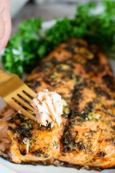 This salmon marinade features bright flavors and doesn't require a long list of ingredients. You can use this marinade for baked or grilled salmon. Salmon Recipes, Fish Recipes, Seafood Recipes, Healthy Recipes, Dinner Recipes, Dinner Ideas, Mediterranean Salmon, Mediterranean Diet Recipes, Fishing
