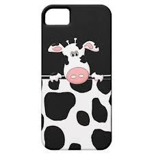 cow print - Google Search
